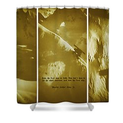Take The First Step Shower Curtain by Dennis Baswell