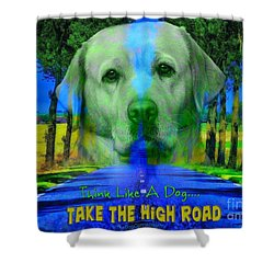 Shower Curtain featuring the digital art Take The High Road by Kathy Tarochione