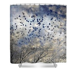 Shower Curtain featuring the photograph Taken Flight by Jan Amiss Photography