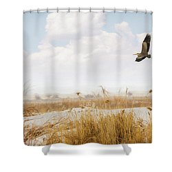 Takeoff Shower Curtain by Priscilla Burgers