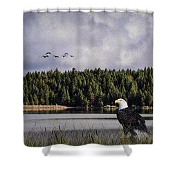 Shower Curtain featuring the photograph Taking A Break As Evening Falls by Diane Schuster