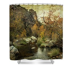 Taking A Hike Shower Curtain