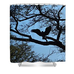 Taking Flight South Africa Shower Curtain by Patrick Murphy