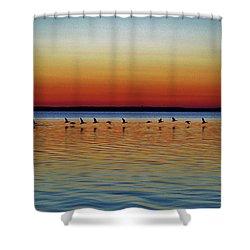 Taking Flight Shower Curtain by William Bartholomew
