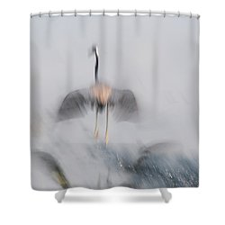 Taking Off Shower Curtain by Carolyn Dalessandro