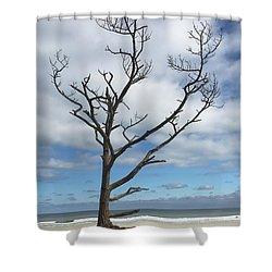 Talbot Stilt Tree #1 Shower Curtain