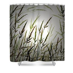 Shower Curtain featuring the digital art Tall Grass And Sunlight by James Williamson