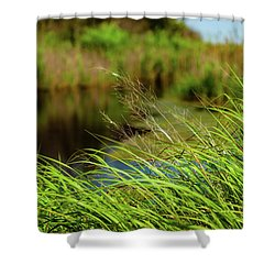 Tall Grass At Boat Dock Shower Curtain