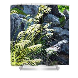 Tall Grass In A Breeze Shower Curtain