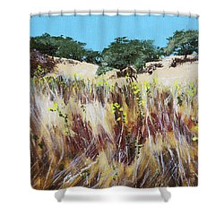 Tall Grass. Late Summer Shower Curtain