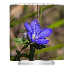 Tall Hydrolea Wildflower Shower Curtain by Christopher L Thomley