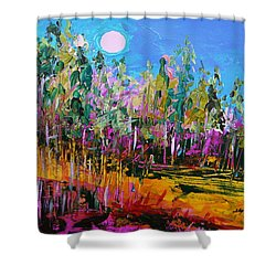 Tall Left And Front Shower Curtain by John Williams