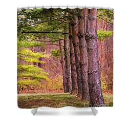 Tall Pines Standing Guard Shower Curtain
