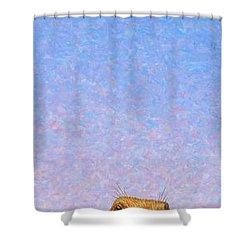 Tall Prairie Dog Shower Curtain by James W Johnson
