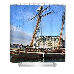 Tall Ship Lynx Shower Curtain by Pat Cook