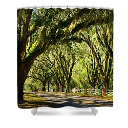 Tallahassee Canopy Road Shower Curtain