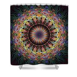 Tambourine Shower Curtain