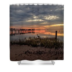 Shower Curtain featuring the photograph Tampa  by Anthony Fields