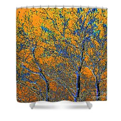 Tangerine Light Shower Curtain