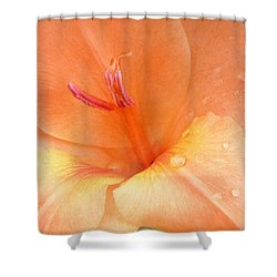 Tangerine Lilium Shower Curtain by Kathi Mirto