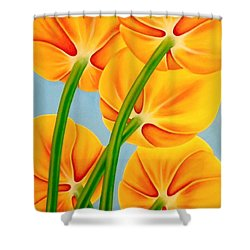 Tangerine Shower Curtain