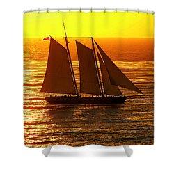Tangerine Sails Shower Curtain by Karen Wiles