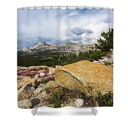 Tanya Overlook  Shower Curtain