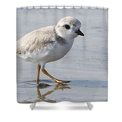Shower Curtain featuring the photograph Tap Dancing For A Meal by Stephen Flint