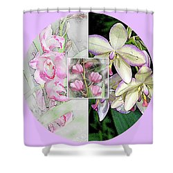 Tapestry Paintings  Shower Curtain