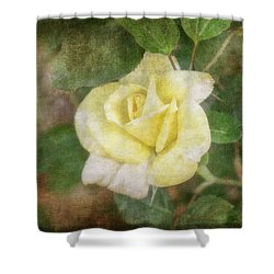 Shower Curtain featuring the photograph Tapestry Rose by Joan Bertucci