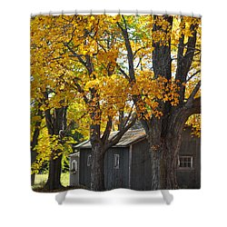 Tar Paper Shack Shower Curtain by Tim Nyberg