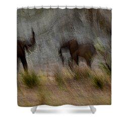 Tarangire Elephants 1 Shower Curtain