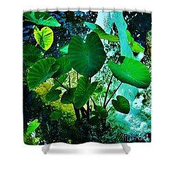 Taro - Kalo The Staff Of Life Shower Curtain