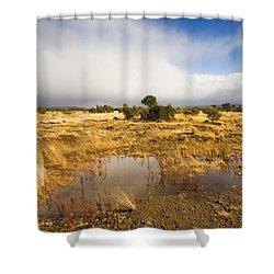 Tasmanian Storm  Shower Curtain by Mike  Dawson