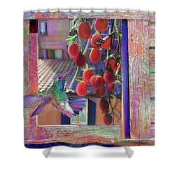 Taste Of Italy  Shower Curtain