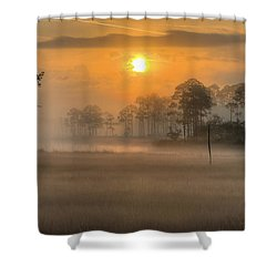 Tate's Hell State Forest Shower Curtain