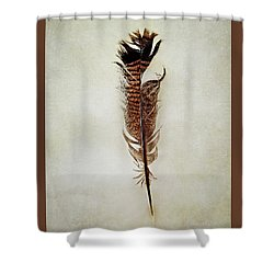 Tattered Turkey Feather Shower Curtain