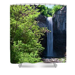 Taughannock Falls 0466 Shower Curtain by Guy Whiteley