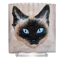 Tazzy Shower Curtain