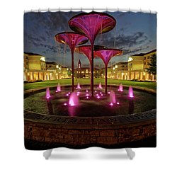 Shower Curtain featuring the photograph Tcu Frog Fountain by Jonathan Davison