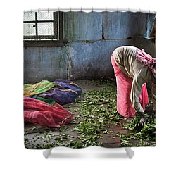 Tea Factory Shower Curtain by Marion Galt
