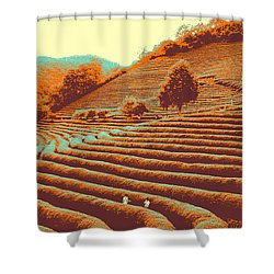Tea Field Shower Curtain