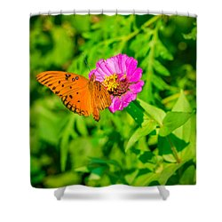 Teacup The Butterfly Shower Curtain by Ken Stanback
