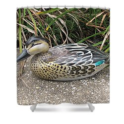 Teal Winged Female Shower Curtain