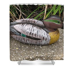 Teal Winged Male Shower Curtain