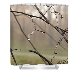 Teardrops Shower Curtain