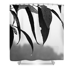 Tears Shower Curtain