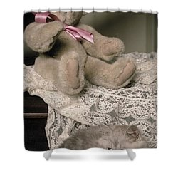 Teddy Bear And Ccat Shower Curtain