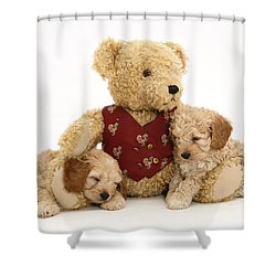Teddy Bear With Puppies Shower Curtain by Jane Burton