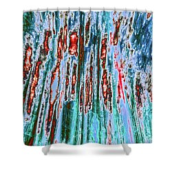Shower Curtain featuring the photograph Teddy Bear's Picnic by Tony Beck